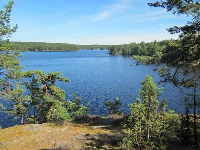Campsite 19 Bärön - Foxen