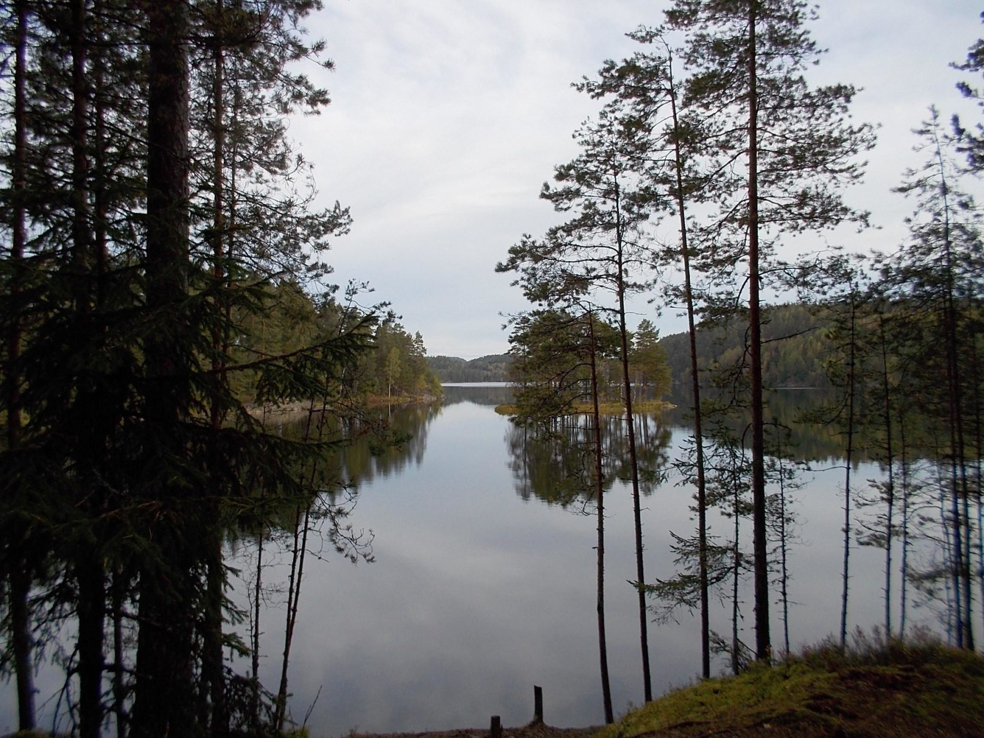 Campsite 30 Hagholmen - Nedre Blomsjön