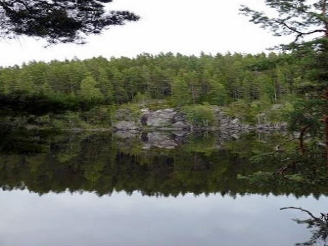 Campsite 41 Nystugeholmen - Flötefjorden