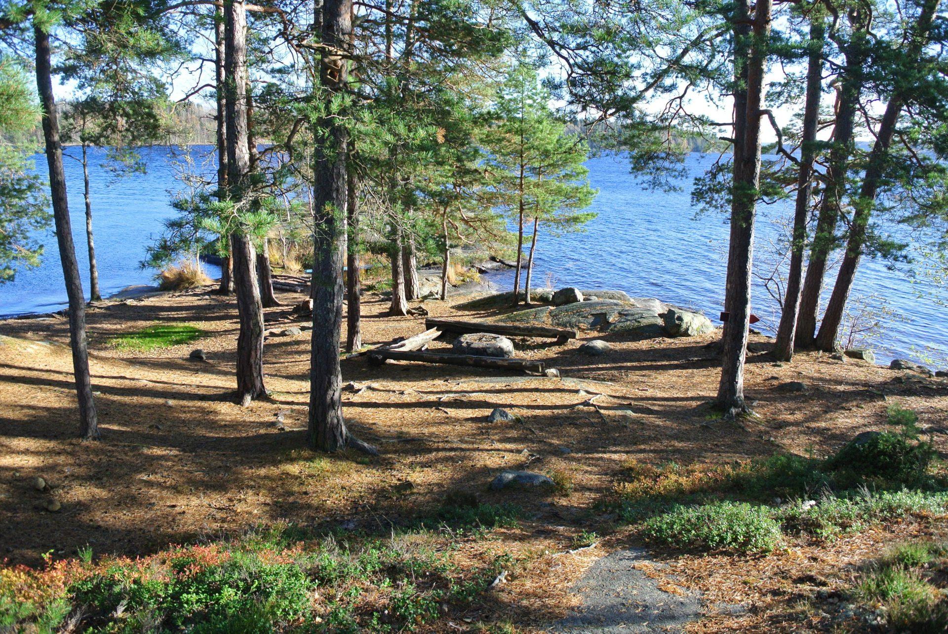 Campsite 64 Hallön Öst - Lelång